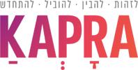 קידום אתר וורדפרס עבור חברת קפרה